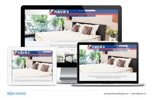 HAVAS website